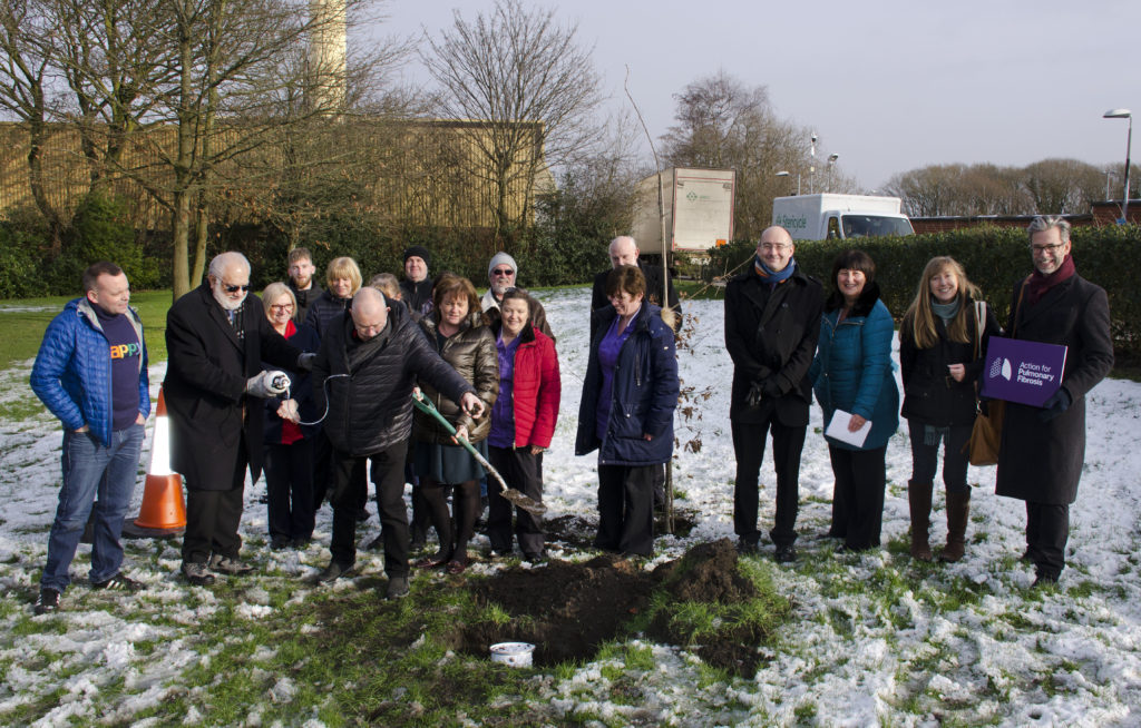 Oak Tree memorial planting in the grounds of the Royal Bolton Hospital